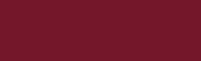 欣鮮國際餐飲股份有限公司 logo