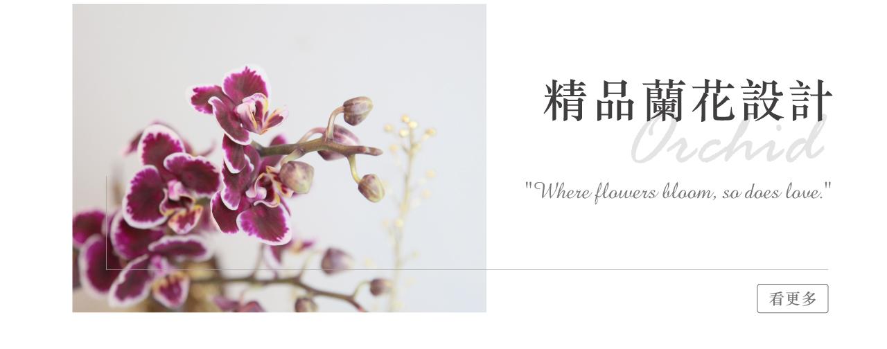 蘭花設計-1