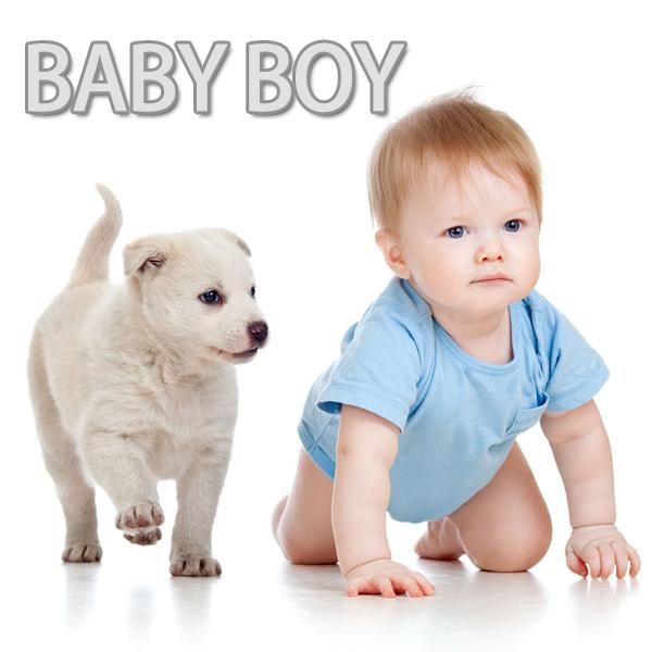 BABY : 0-24M-2
