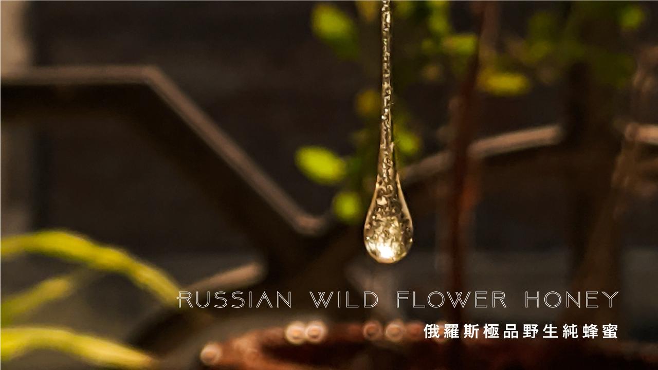 俄羅斯極品野生純蜂蜜