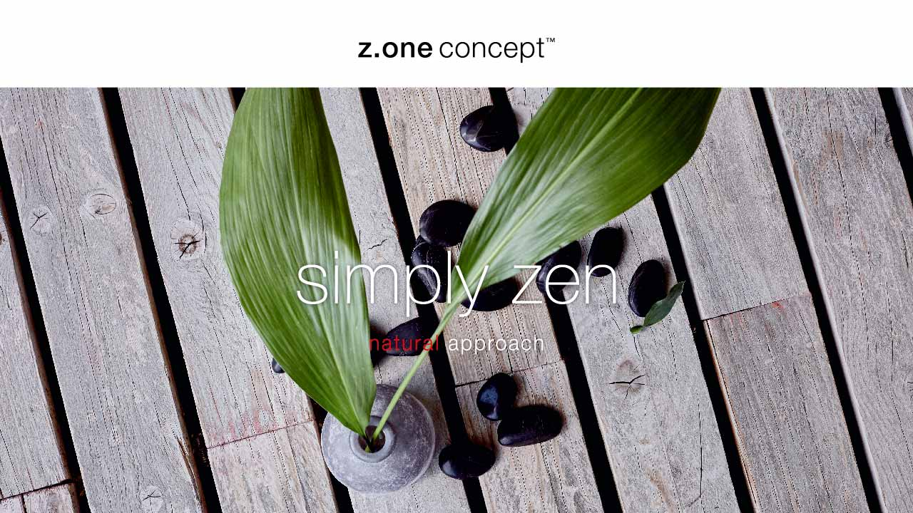 z.one concept-1