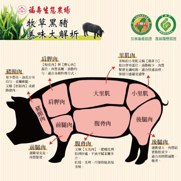 牧草豬-美味關鍵-2