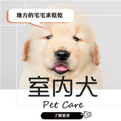 狗狗特別企劃-1