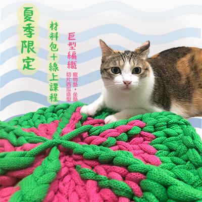 【貓窩DIY】7個步驟就ok?巨型針織寵物睡墊課程⭐線上教學⭐