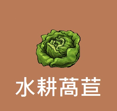 購買流程+會員專屬+水耕萵苣-3